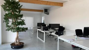 L'équipe s'installe dans ses nouveaux bureaux!